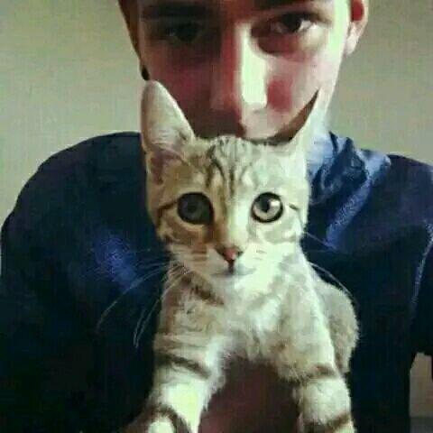 头像抱着猫