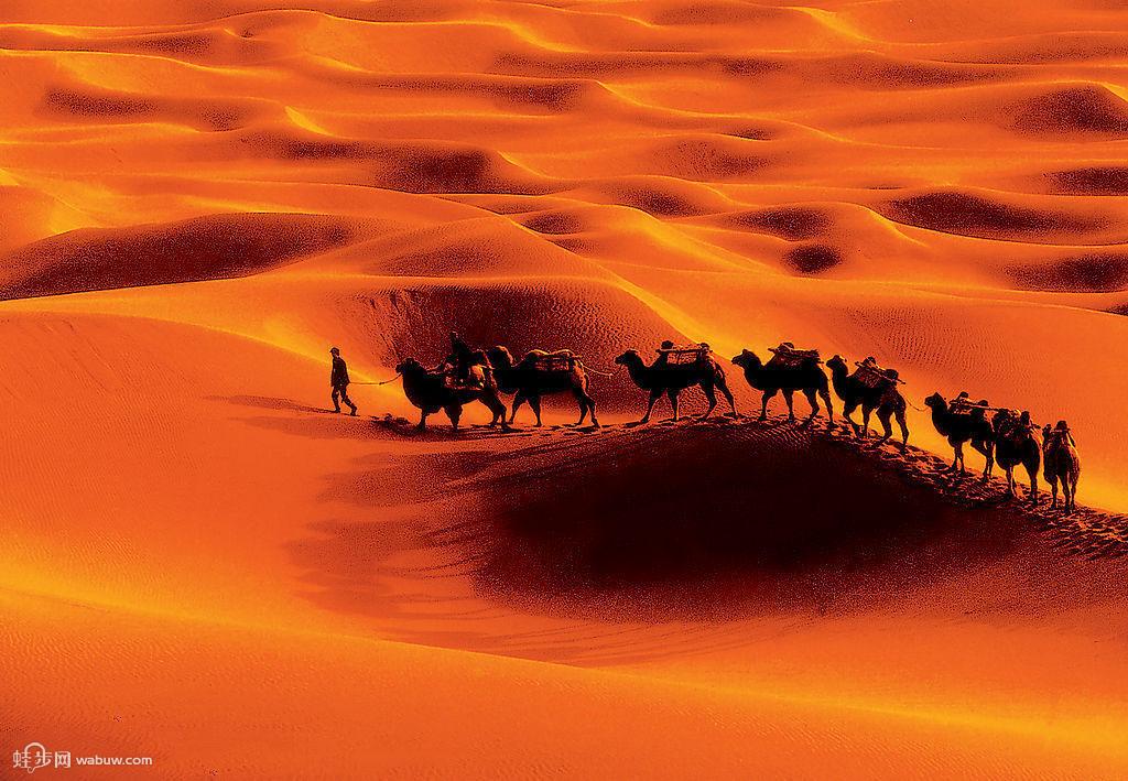 塔克拉玛干沙漠海拔