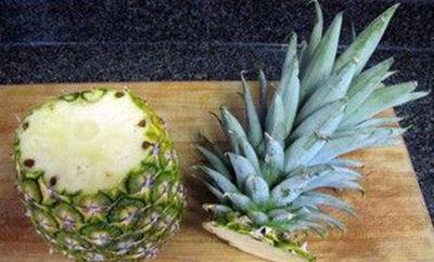 菠萝怎么养盆栽