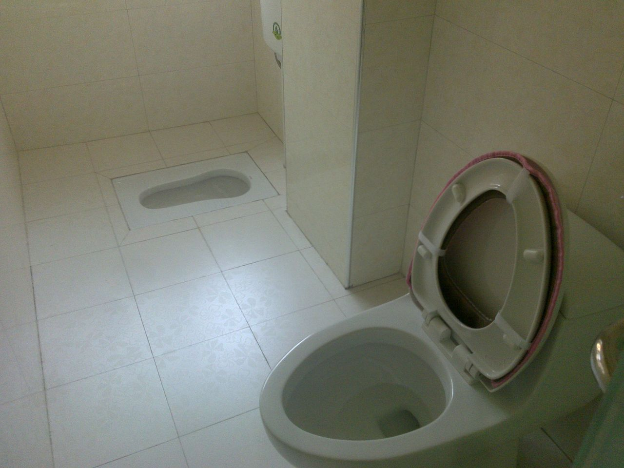 怎样在一个卫生间安装蹲式和做式马桶图片