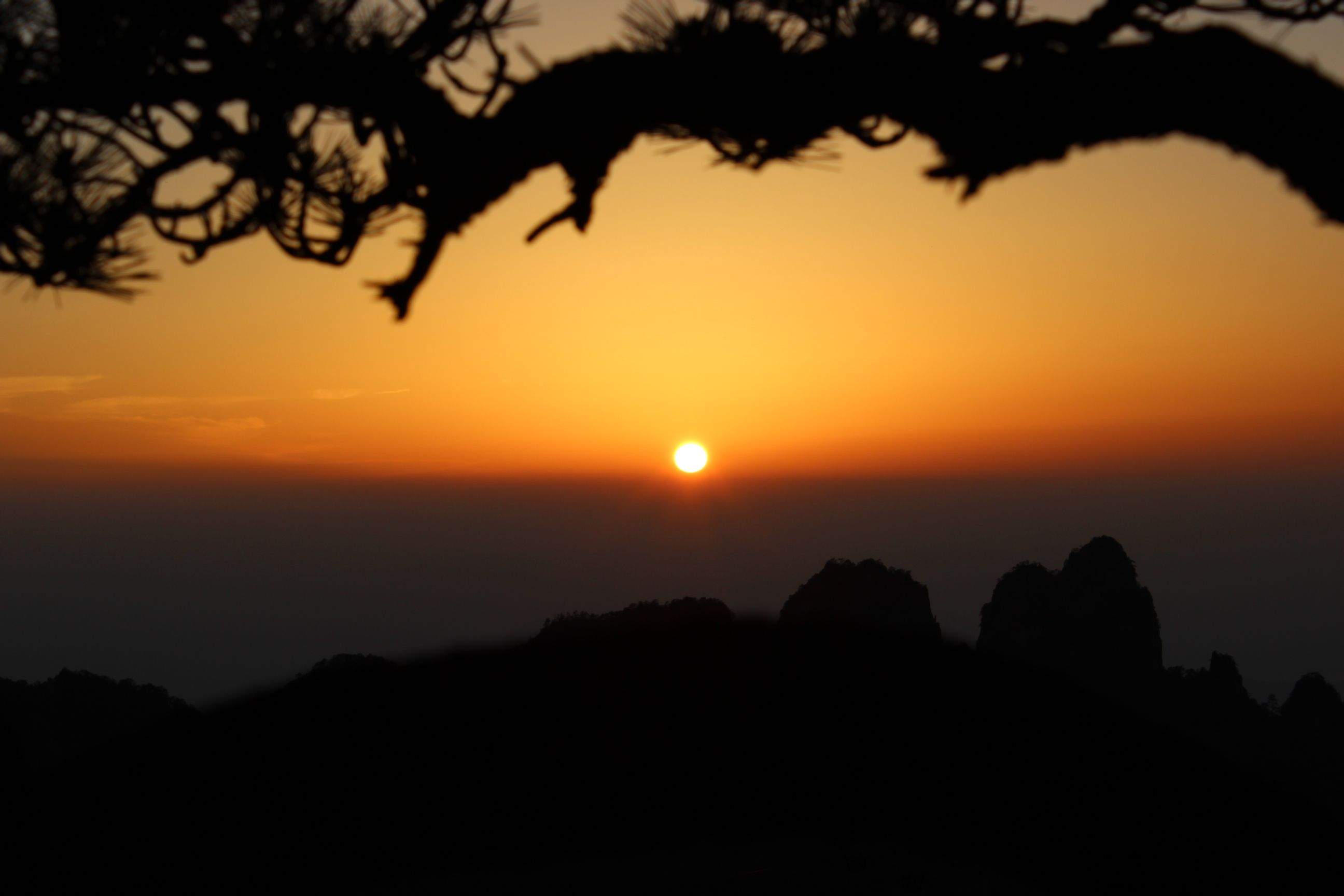 黄山の画像 p1_31