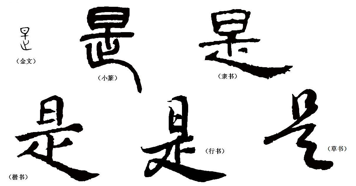 汉字的演变过程图片图片