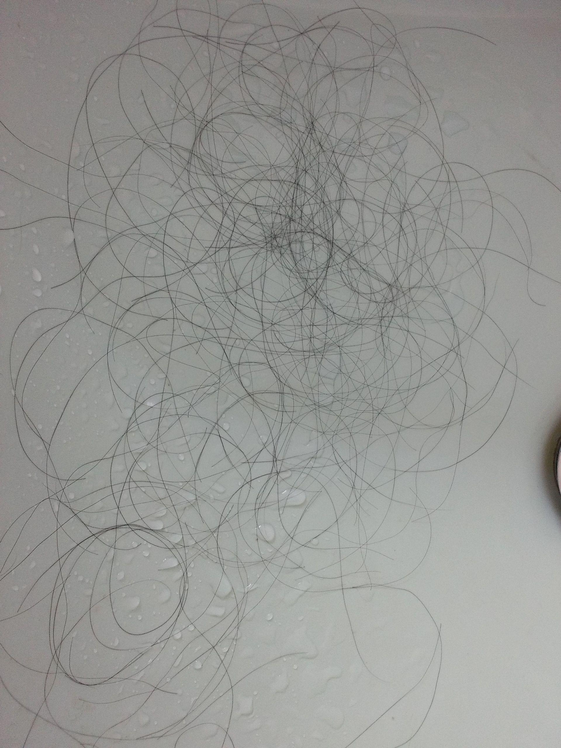每天早上梳头都掉这么多头发,是脱发吗?图片