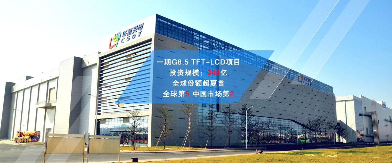 河南新乡华星制药厂_深圳市华星光电技术有限公司的简介