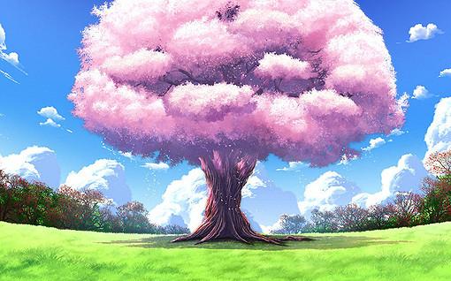 Картинки природа сакура