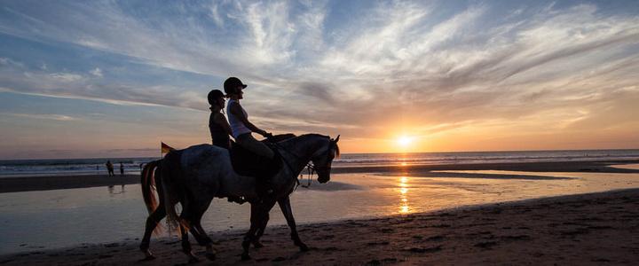去哪里旅游可以骑马
