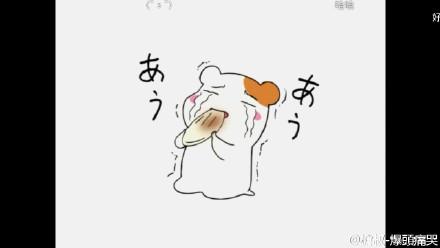 下一篇:搞笑兔字文字微信表情包下载 微信樱桃小丸子--小仓鼠吃图片