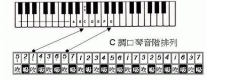 24孔c调口琴音阶排列图图片