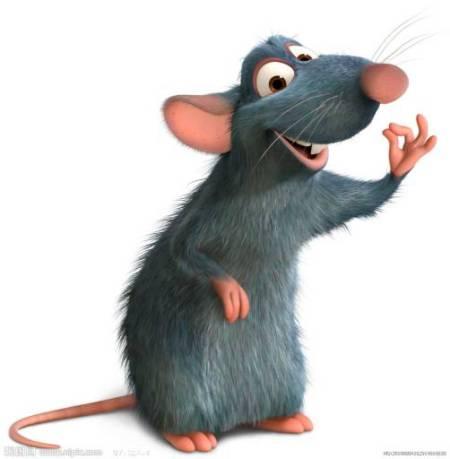 求老鼠图片.谢谢.图片