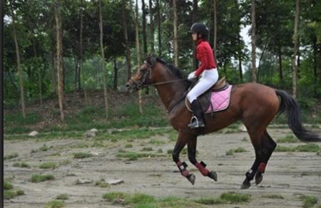 成都美女骑马有什么好处