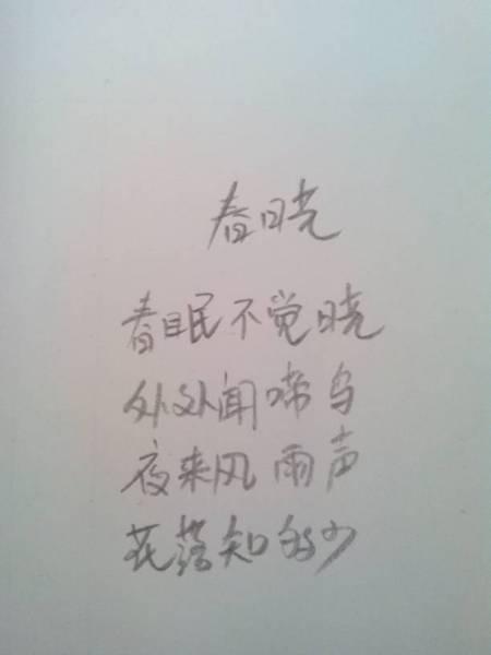 春晓这首古诗怎么写?图片