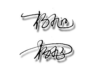 杨旭艺术签名设计手写稿图片