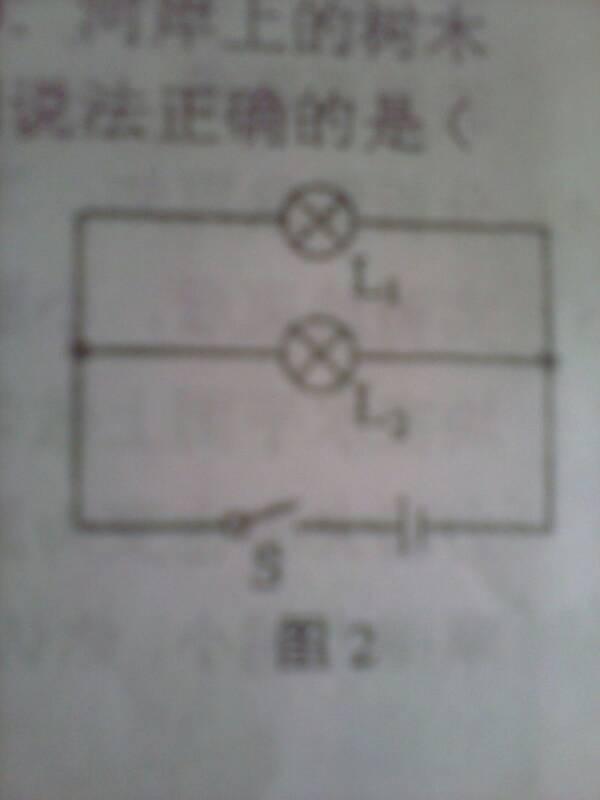 如图所示的电路中 将开关S闭合