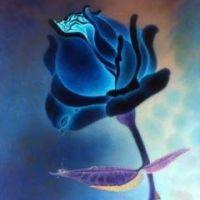 带黑玫瑰的头像_