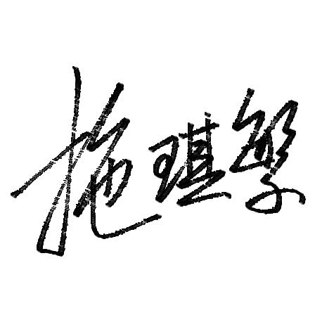 设计一下签名,笔画比较多,求简单点的 名字 施琪繁
