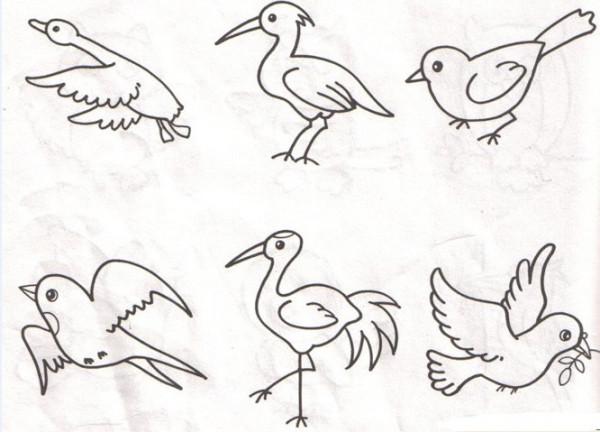 如何画鸟简笔画图片
