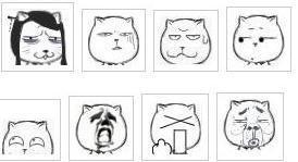金馆长恶搞表情和猥琐猫表情图片