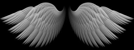 ps白色翅膀素材