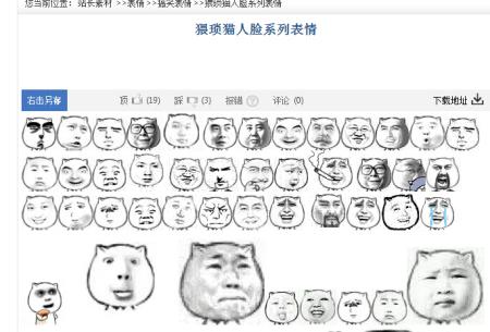 猥琐猫表情单个表情文字包_猥琐猫人脸文字单个人脸包表情包问熊猫图片