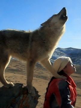 李微漪带着格林重返草原,一路追寻狼群的踪迹,历经严寒酷雪,终于目送图片